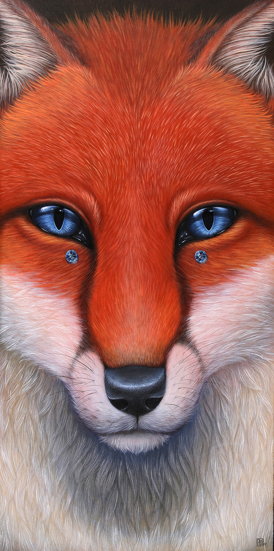 fox, jewel, blue, white, red